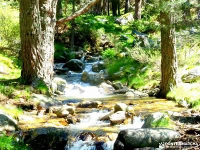 Canal Barranca_Cuerda Cabrillas; Sierra de Madrid, Guadarrama, Navacerrada trekking